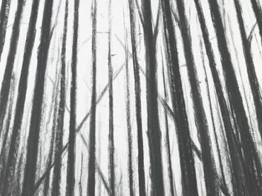"""Woods"", 75 x 55 cm, charcoal on paper, 2007 (coll. Flemish Parliament)"
